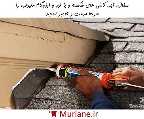 تعمیر سقف برای پیشگیری از تهاجم موریانه ها