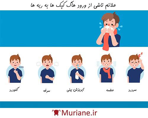 علائم آلرژی ناشی از موریانه ها